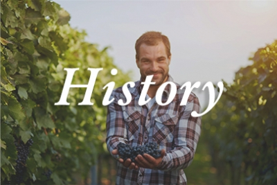 The History of Petite Sirah